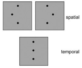 Participants were asked to discriminate between three-dot patterns, while the horizontal offset became less and less.