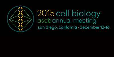 Chasing invasive cancer cells and more at #ASCB15